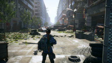 Simple Realistic Reshade for The Division 2 (DX12)