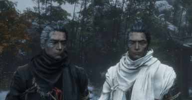 Black Sekiro (and White)