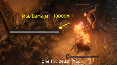 One Hit Death and Sturdy Enemy Mod