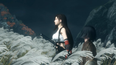 Tifa Lockhart from Final Fantasy VII Remake