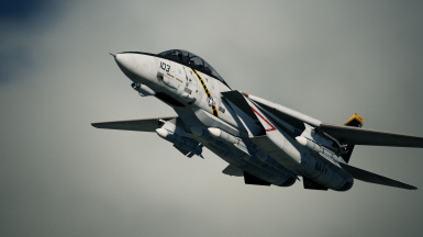 F-14D -Jolly Rogers-