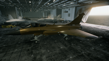 Rafale M -Golden Gale-