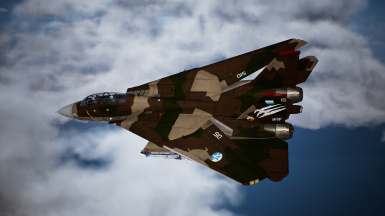 F-14D -INF Brown-