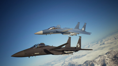 F-15S MTD -Dision- and -Nemo-