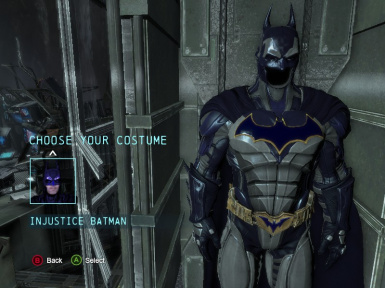 Injustice Blue and Grey