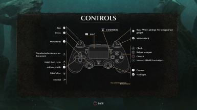 PS4 Controls Mod