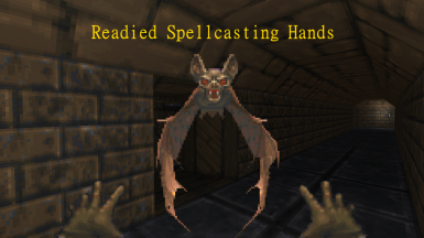 Readied Spellcasting Hands