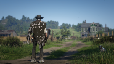 Olive Green 'Man with no Name' Poncho Texture