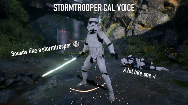 Stormtrooper Cal Voice