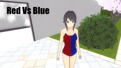 Red Vs Blue Swimsuit