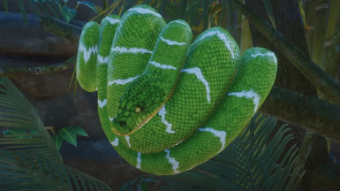 Emerald Tree Boa (Updated for 1.4)