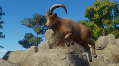 Aoudad (Updated for 1.4)