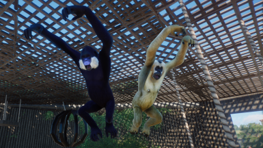 White Cheeked Gibbon (Updated for 1.4)