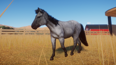 Blue Roan Mustang (Updated for 1.4)