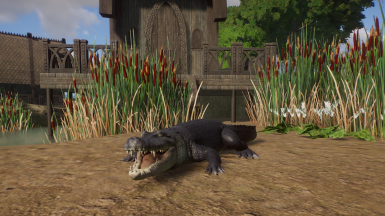 American Alligator (Updated for 1.2)