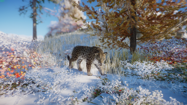 (Updated for 1.6) Amur Leopard-New Species