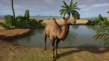 Dromedary Camel (Updated For 1.4)