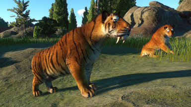 Sabretooth Cat - Smilodon populator