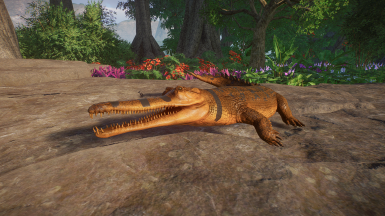 (1.6) Tomistoma (False Gharial) - New Species