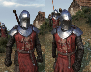 Swadian plated shoulders