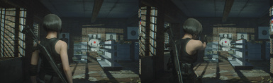 RE3--No Zoom Camera with Slight Camera Bounce (Jill Only)