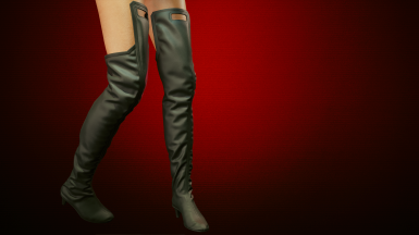 Boots Above Knee - Color Variants