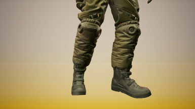 Ranger 2 Pants Texture 1 (Pants textures 2-4 also available)