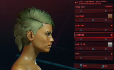 Female Messy Pixie Replaces hair style 18