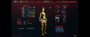Lizzies Shorts + Tactical harness - Replaces tinos shorts