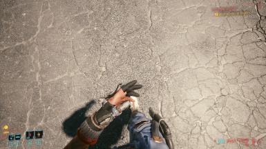 Gun and holster in first person