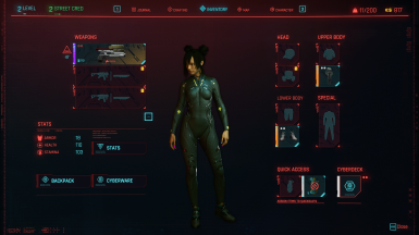 Netta's Level, Stats, and gear