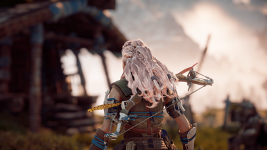 Aloy - Hair Colors