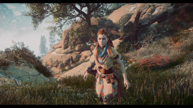 HZD - Cinematic Vision Reshade