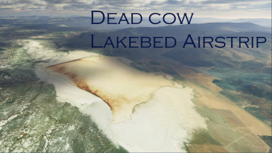 Dead Cow Lake Bed Airstrip