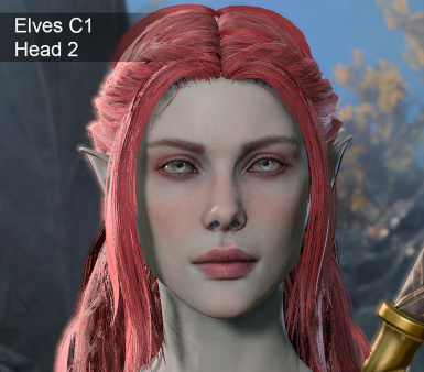 Other heads for your character