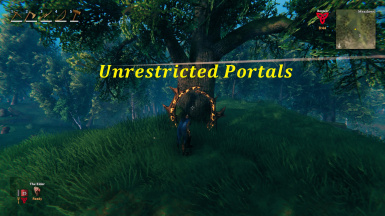 Unrestricted Portals