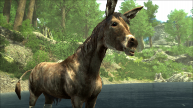 Enderal Donkey