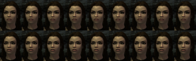 Endralean - Nose options