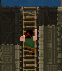 Climing Ladder Animation