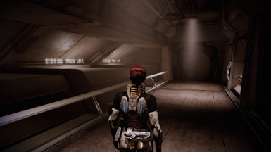 Disable Heavy Weapons for Mass Effect 2