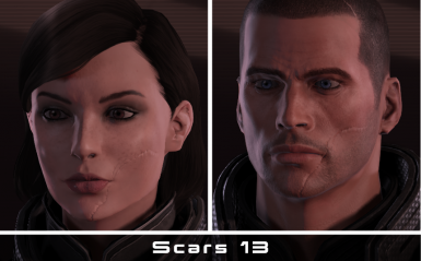 Face scars AND Custom Renegade  for Legendary Edition 2-3