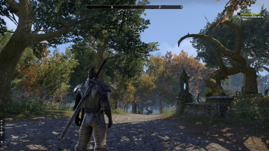 Epic Eso Graphics boost