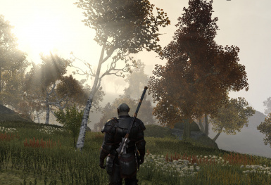 Beautiful TESO (For DirectX11)