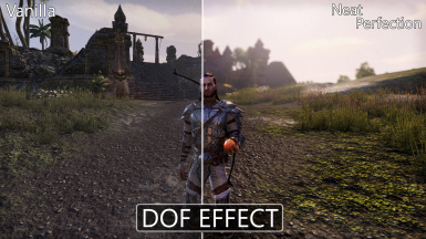 Neat Perfection ENHANCED EDITION (Next-Gen look and DOF