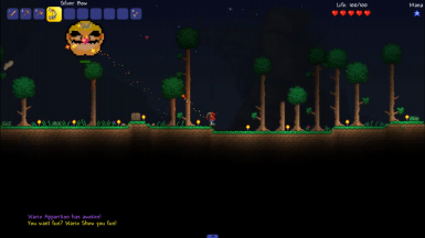 Every Copy Of Terraria Is Personalised