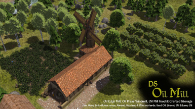 DS Oil Mill