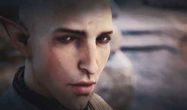 The Pride - new face texture for Solas