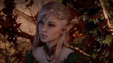 Arisara - Female Elf Sliders and Save