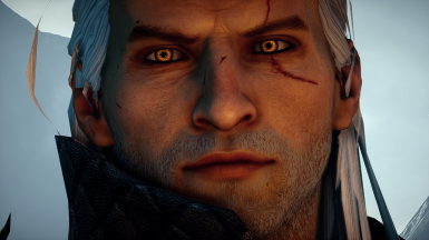 Geralt of Rivia Hairstyle
