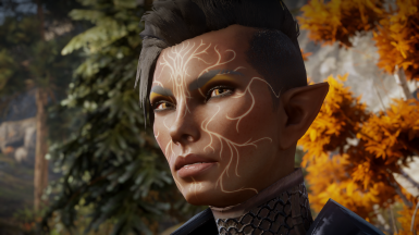 Sindava -  Female Elf Inquisitor sliders (mods and no mods versions) also has optional save game files